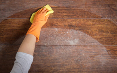 Haven't Done Your Routine Dusting? Experts Say It Could Be Life-Threatening